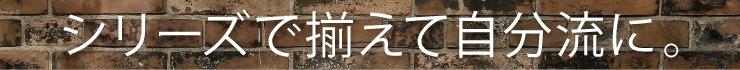 【zdragon】シリーズコレクション